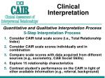 clinical interpretation