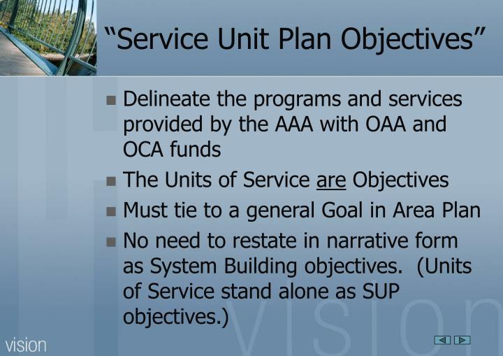 Service unit plan objectives
