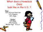what does a homeless child look like in the u s