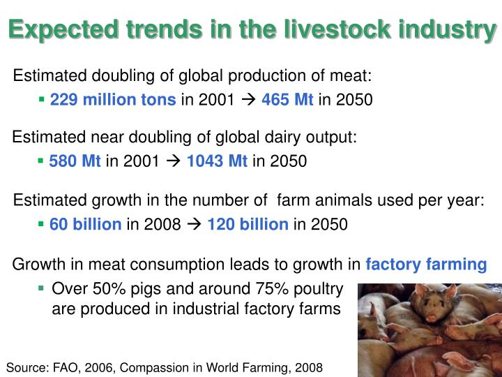Expected trends in the livestock industry