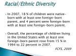racial ethnic diversity1