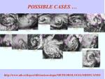 possible cases
