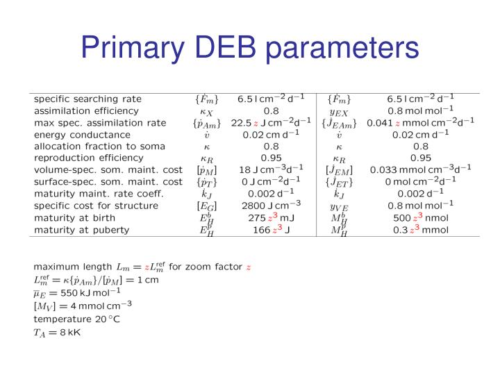 Primary DEB parameters