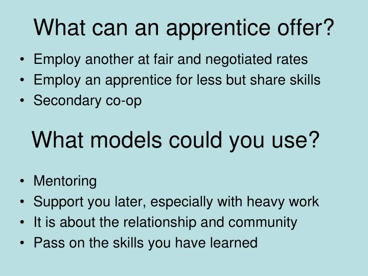 What can an apprentice offer?
