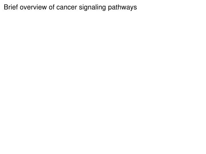 Brief overview of cancer signaling pathways