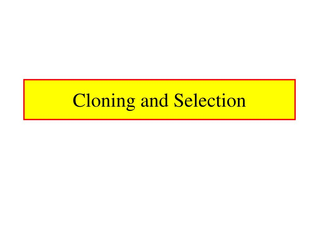 cloning and selection l.