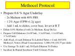 methocel protocol