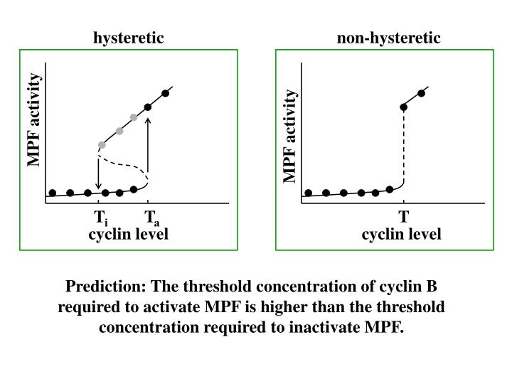 hysteretic