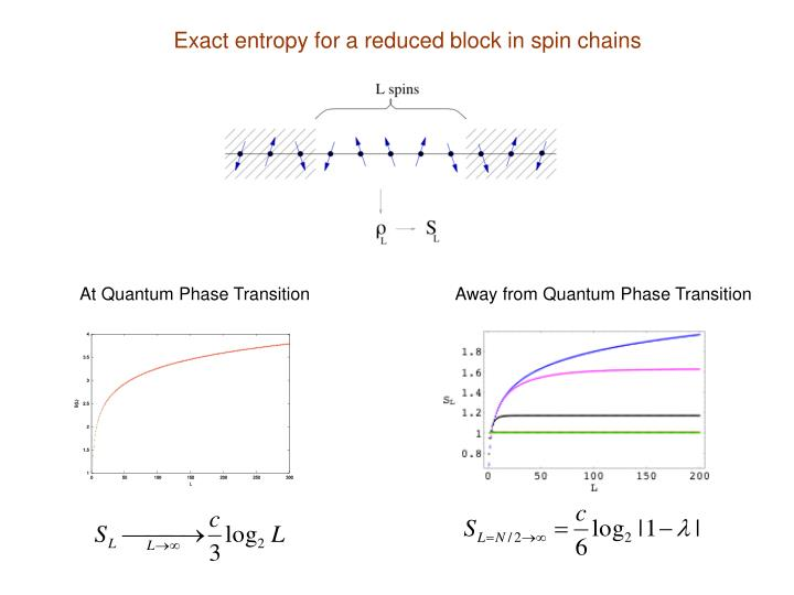 Exact entropy for a reduced block in spin chains