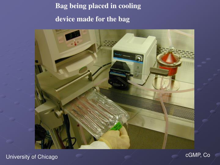 Bag being placed in cooling