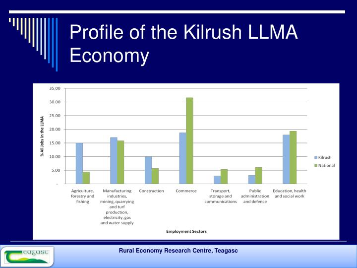 Profile of the Kilrush LLMA Economy