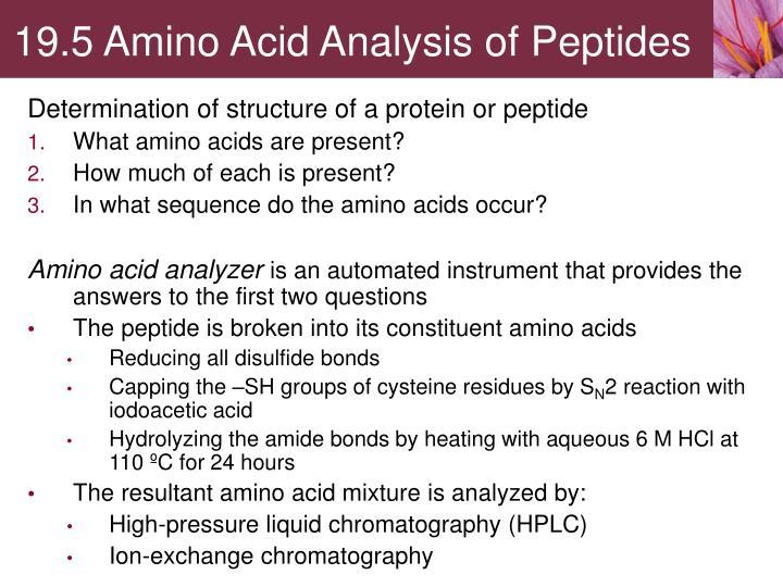 19.5 Amino Acid Analysis of Peptides