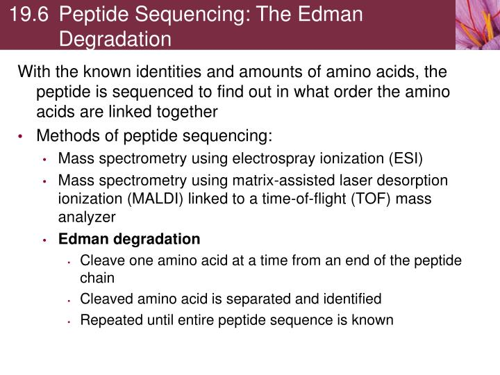 19.6Peptide Sequencing: The Edman Degradation