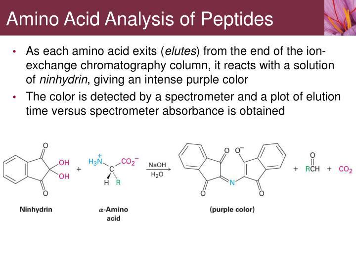 Amino Acid Analysis of Peptides