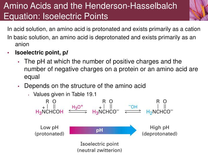 Amino Acids and the Henderson-Hasselbalch Equation: Isoelectric Points