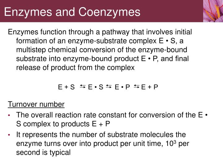 Enzymes function through a pathway that involves initial formation of an enzyme-substrate complex E
