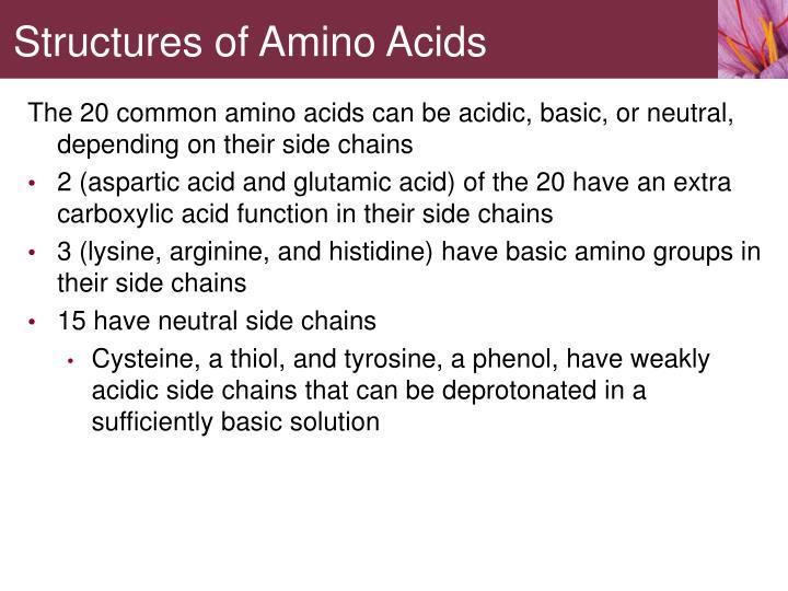 Structures of Amino Acids