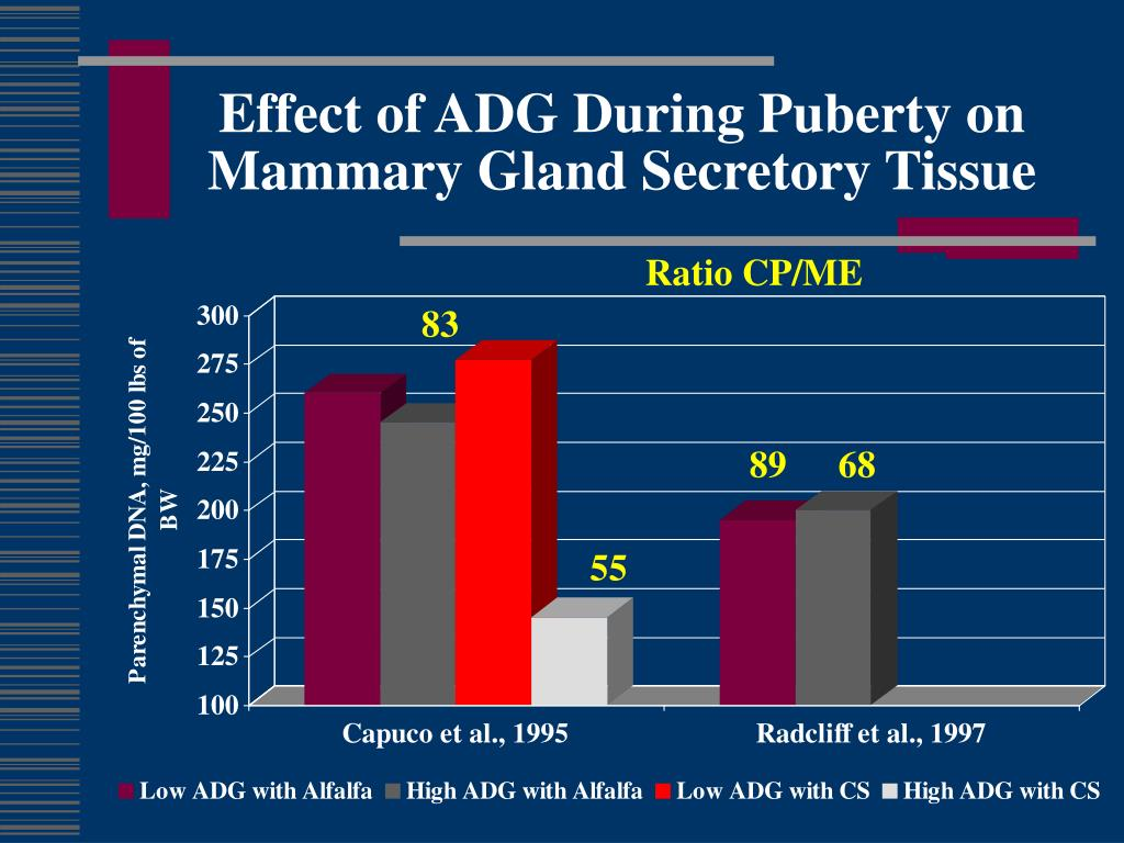 Effect of ADG During Puberty on Mammary Gland Secretory Tissue