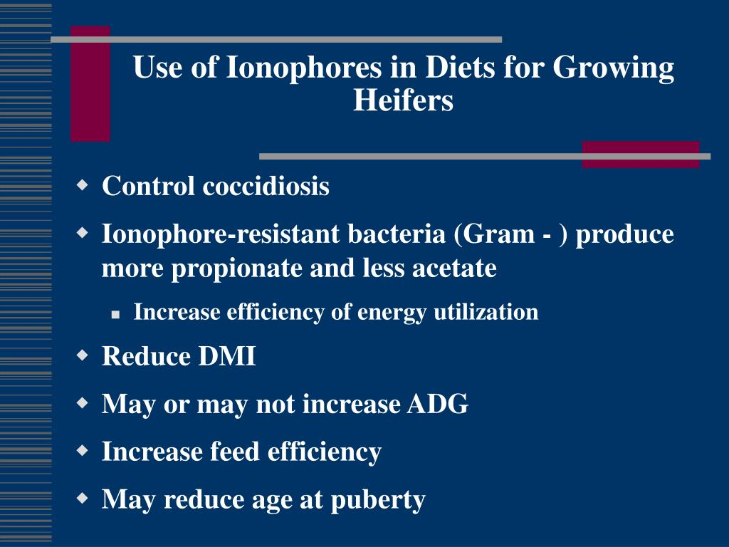 Use of Ionophores in Diets for Growing Heifers
