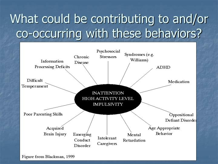 What could be contributing to and or co occurring with these behaviors