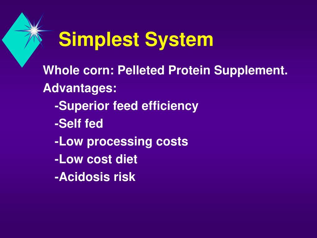 Simplest System