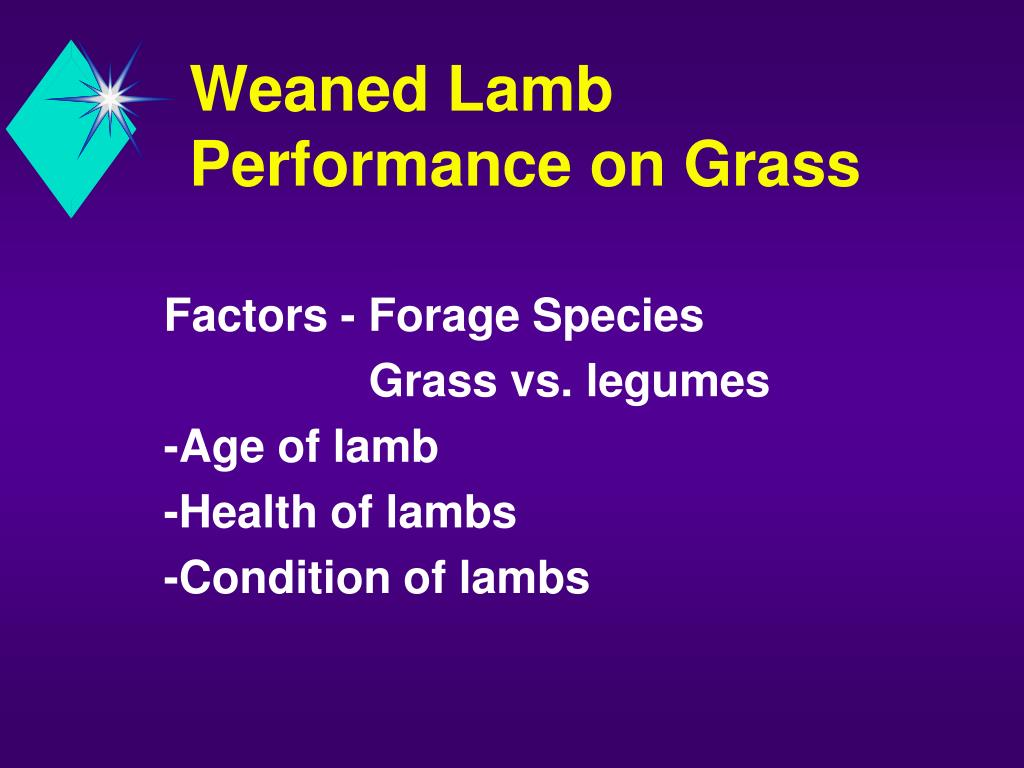 Weaned Lamb Performance on Grass