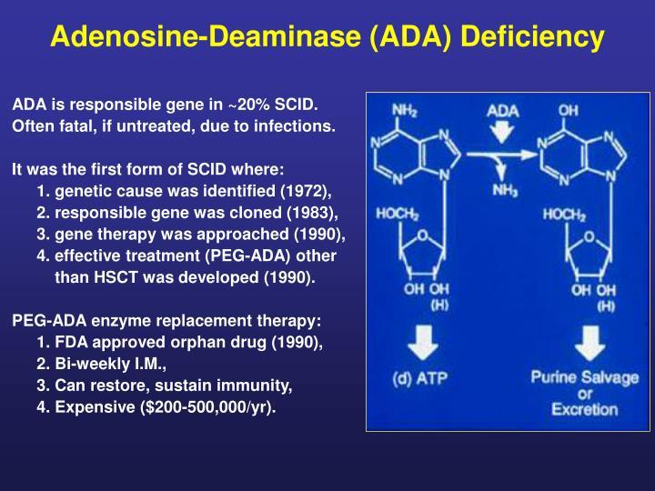 adenosine deaminase ada deficiency n.