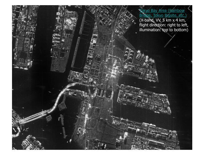 Tokyo Bay Area (Rainbow Bridge, Tokyo Bigsite, etc.)