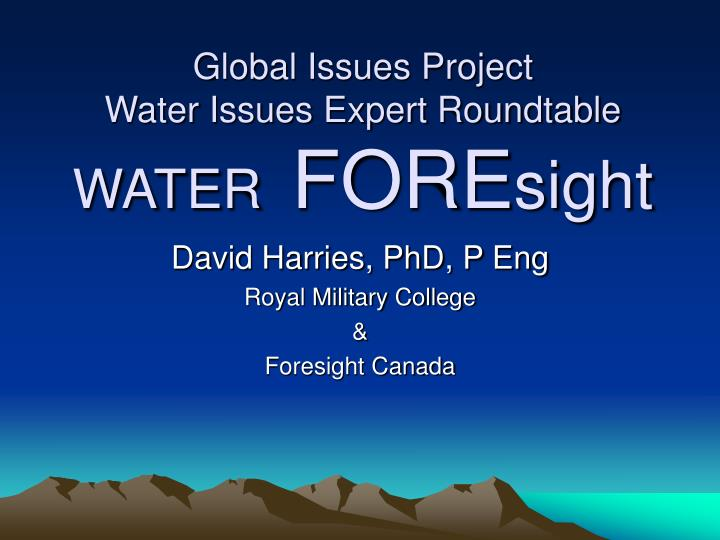 global issues project water issues expert roundtable water fore sight n.