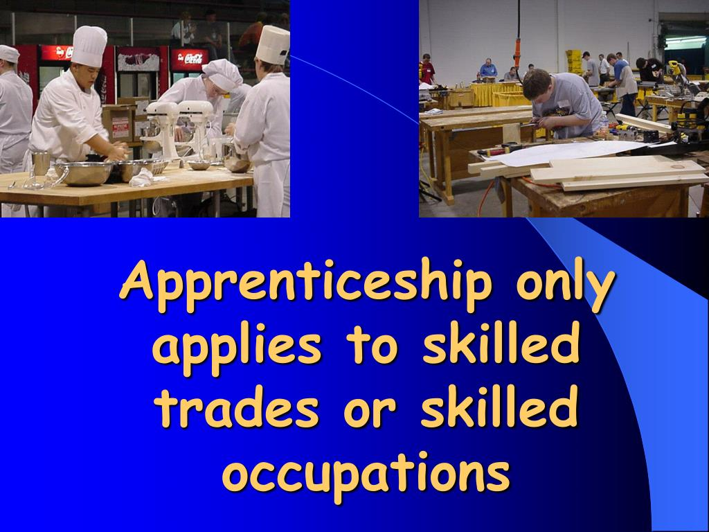 Ppt Skilled Trades Apprenticeship And The Ontario Youth