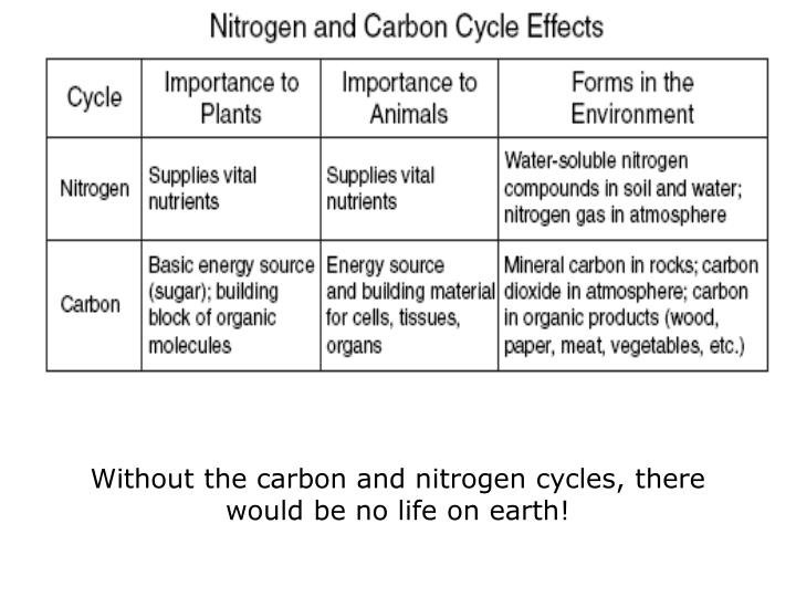 Without the carbon and nitrogen cycles, there would be no life on earth!