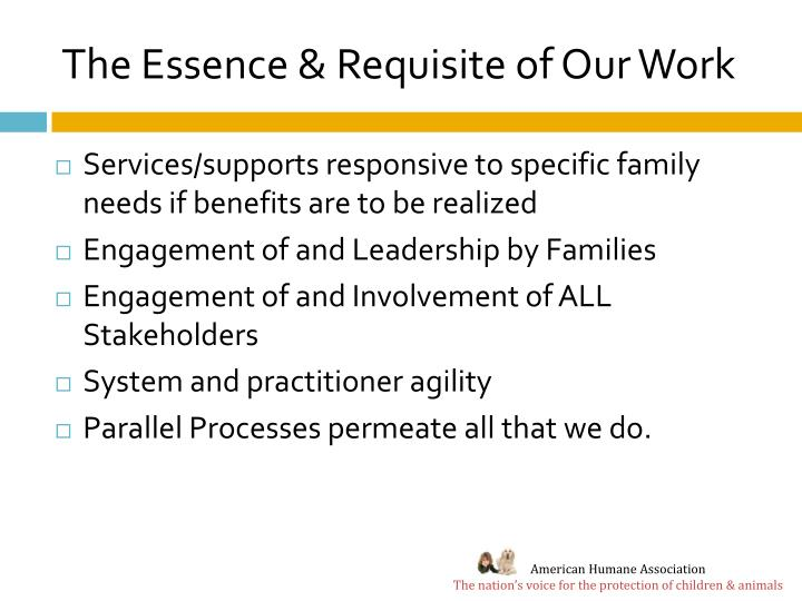 The Essence & Requisite of Our Work