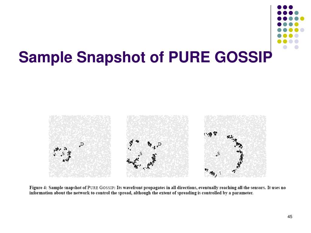 Sample Snapshot of PURE GOSSIP