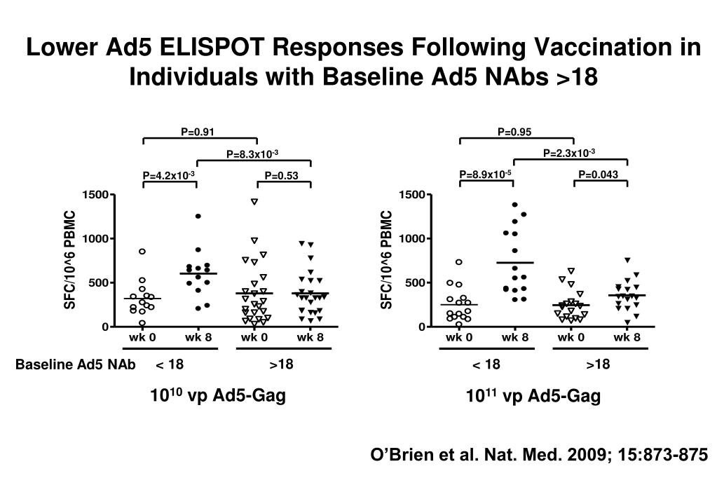Lower Ad5 ELISPOT Responses Following Vaccination in Individuals with Baseline Ad5 NAbs >18