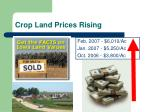 crop land prices rising
