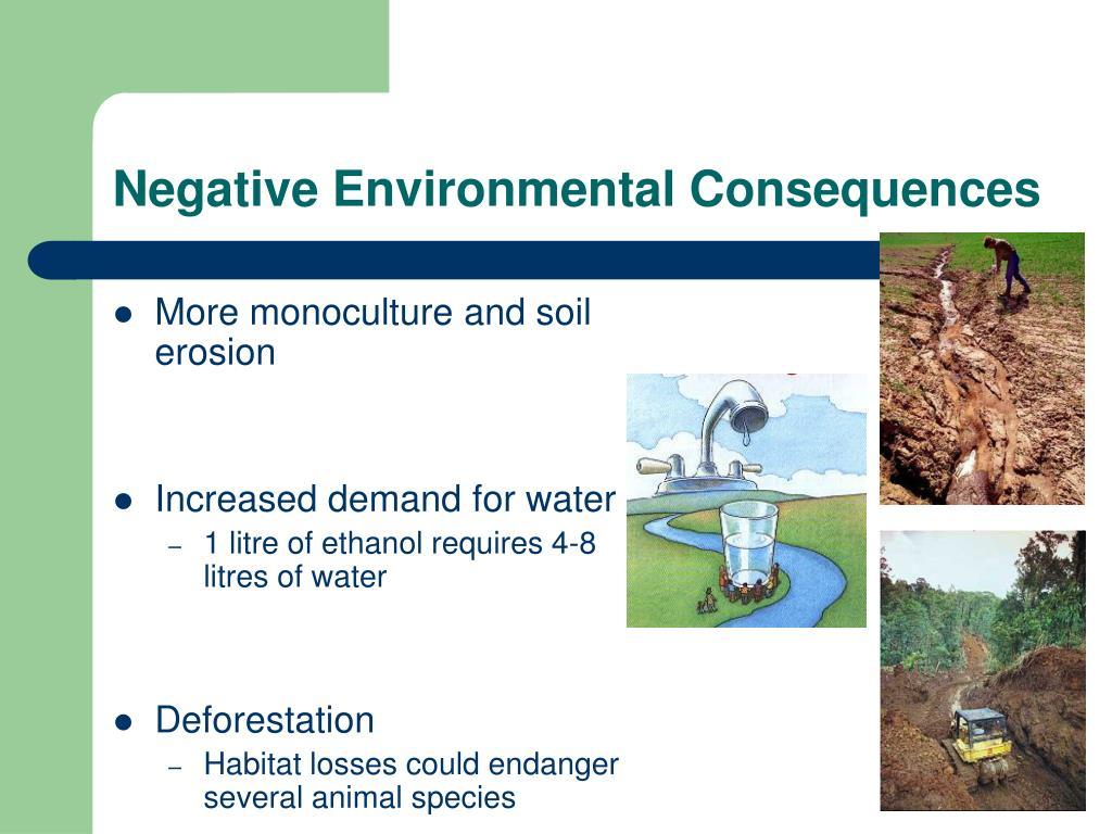 Negative Environmental Consequences