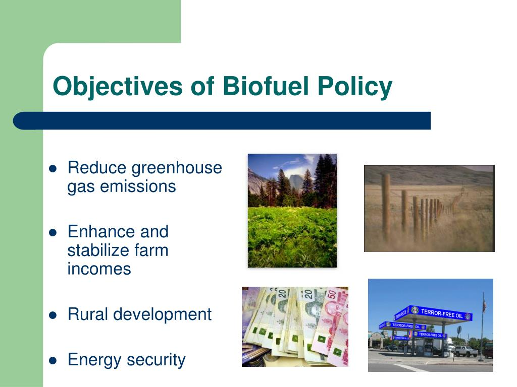 Objectives of Biofuel Policy