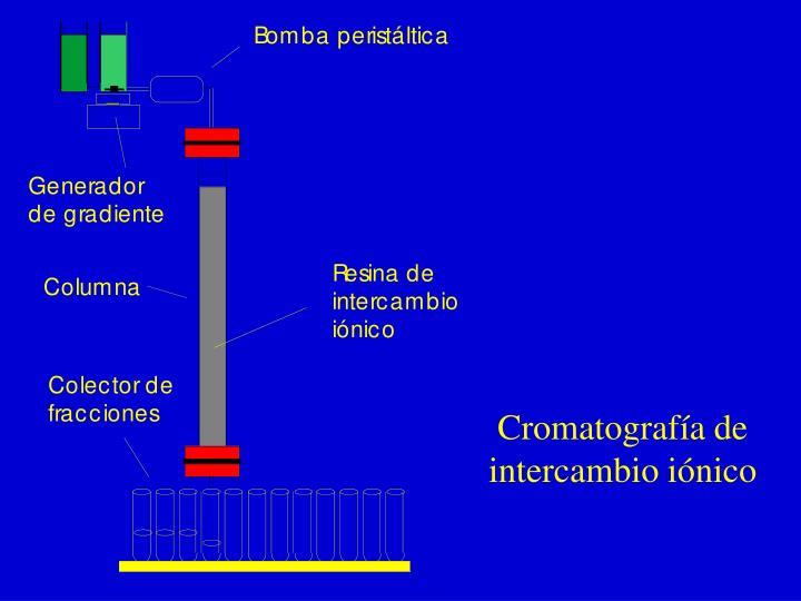 Cromatografía de