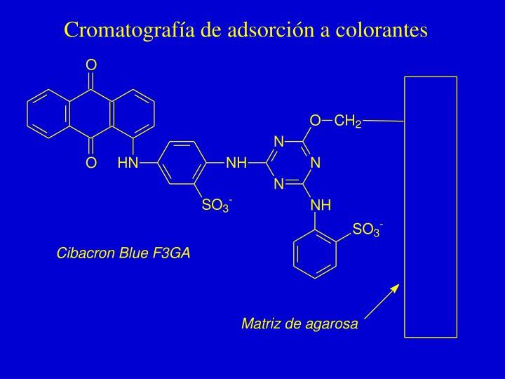 Cromatografía de adsorción a colorantes