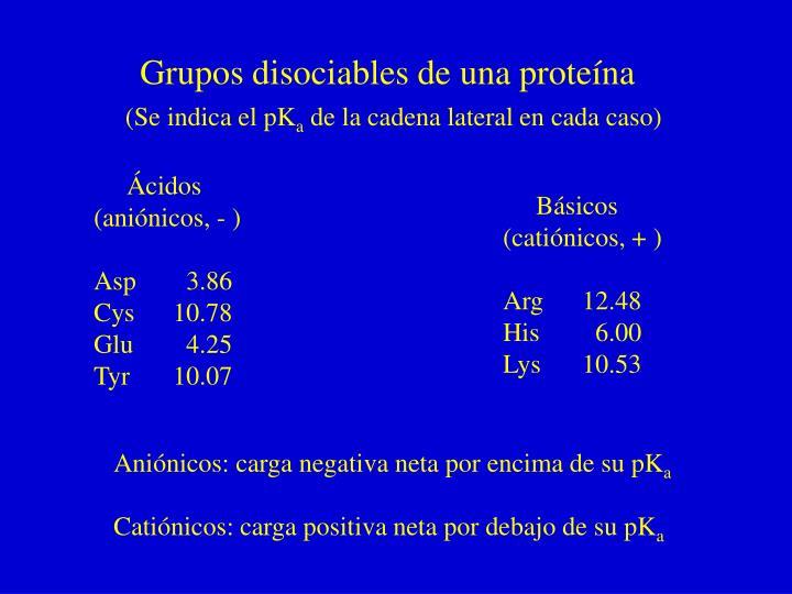 Grupos disociables de una proteína