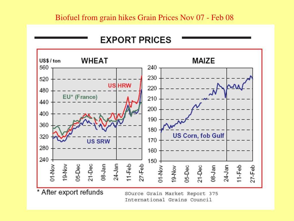 Biofuel from grain hikes Grain Prices Nov 07 - Feb 08