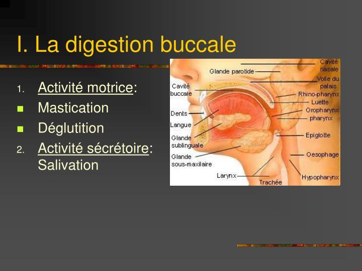 I la digestion buccale