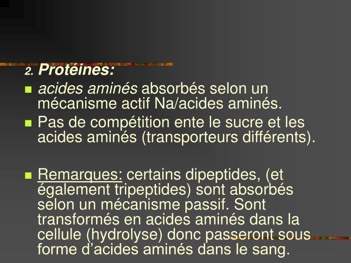 Protéines: