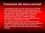 funciones del moco cervical