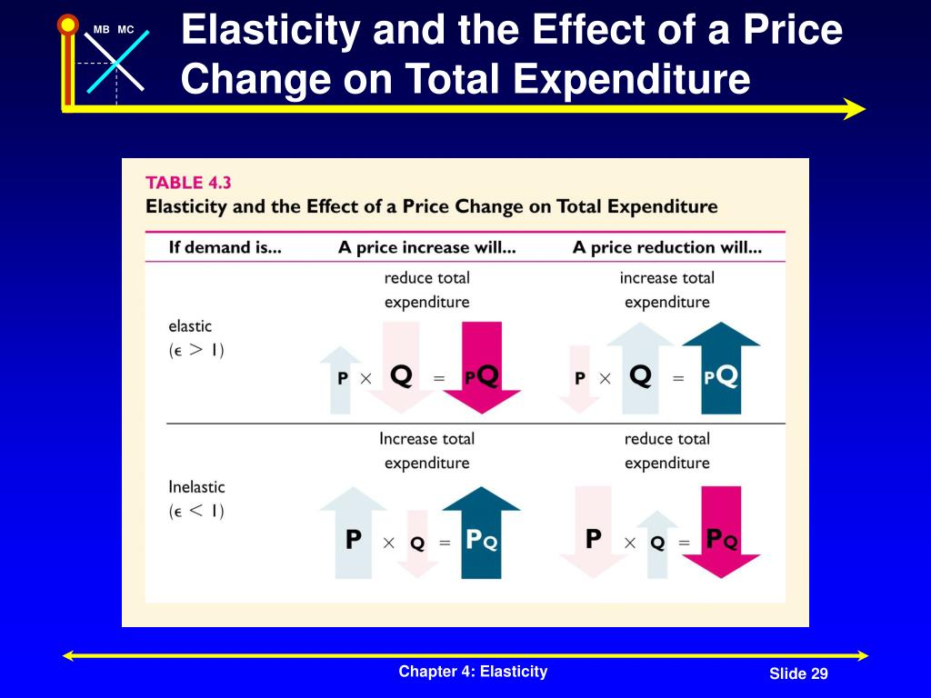 Elasticity and the Effect of a Price Change on Total Expenditure