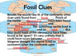 fossil clues