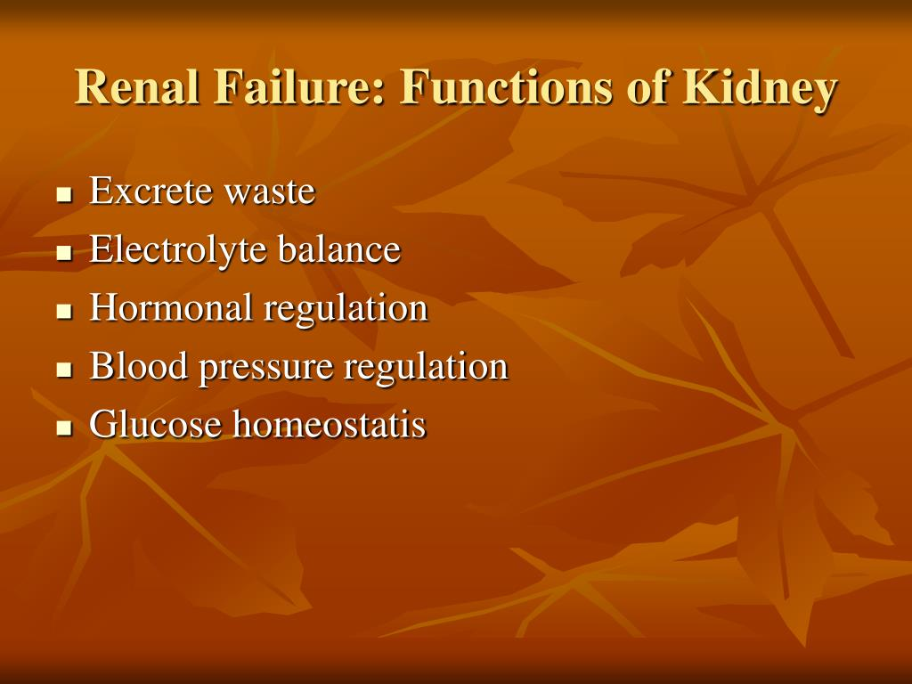 Renal Failure: Functions of Kidney