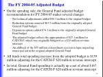 the fy 2004 05 adjusted budget19