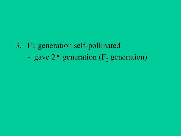 F1 generation self-pollinated