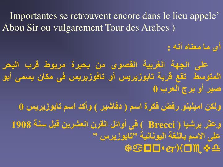 Importantes se retrouvent encore dans le lieu appele' Abou Sir ou vulgarement Tour des Arabes )